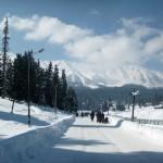 Top 8 places to visit in Srinagar Kashmir