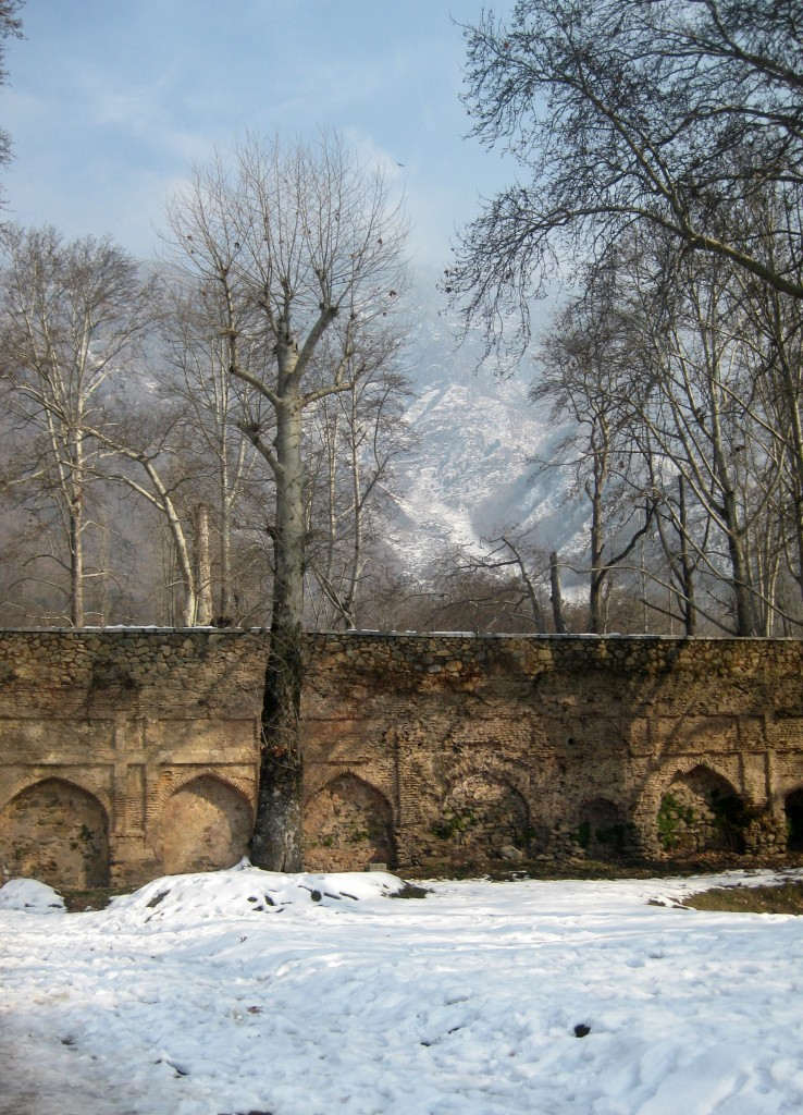 nishat bagh winter srinagar