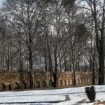 A Kashmiri Photo Story (1): Nishat Bagh in winter