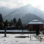 A Kashmiri Photo Story (7): Chashma Shahi Srinagar