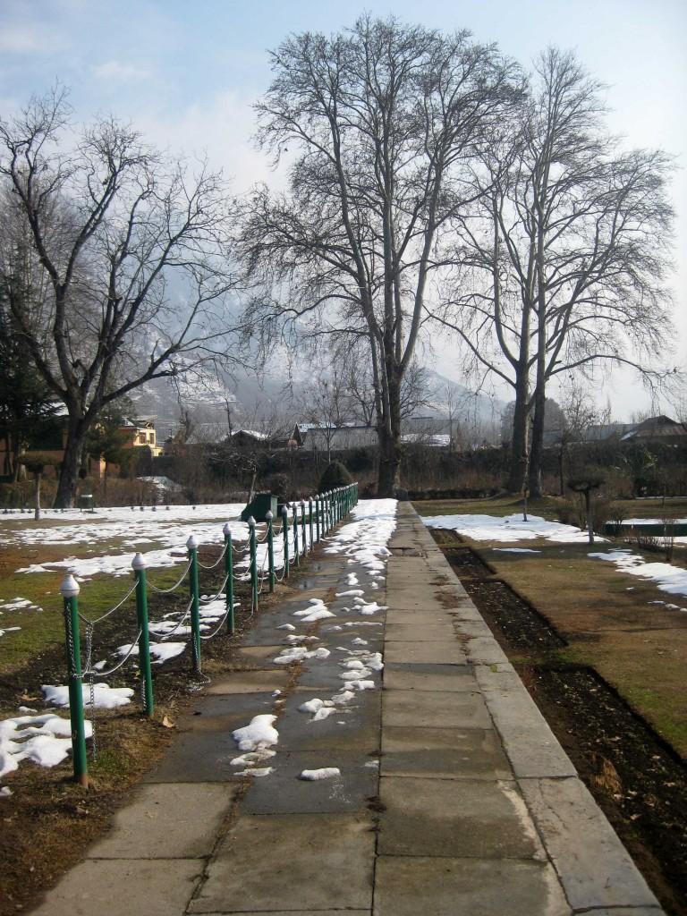 Shalimar Bagh Srinagar kashmir