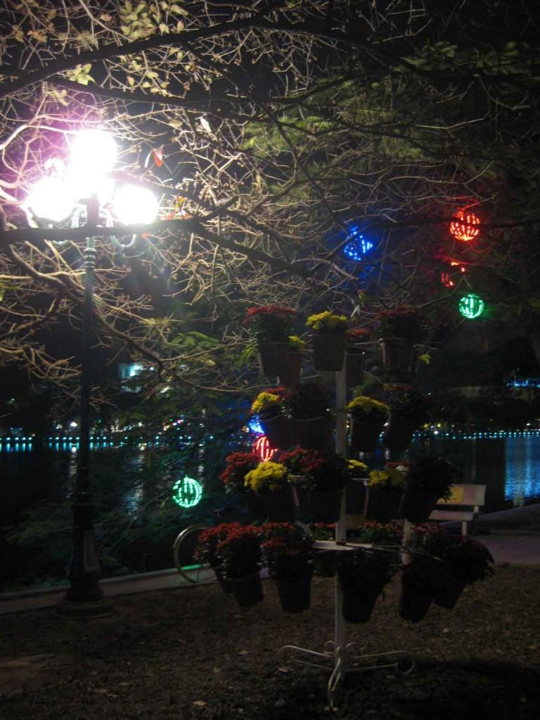 Hoan Kiam Lake night flowers