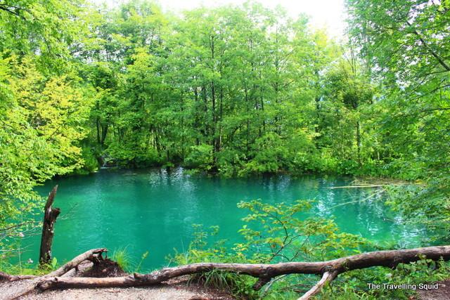 plitvice lakes green pool water