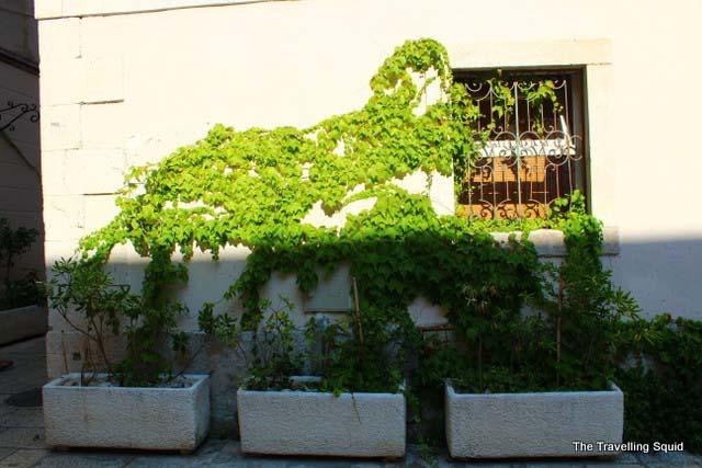 diocletians palace split moss