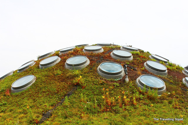 california academy of sciences living roof dome