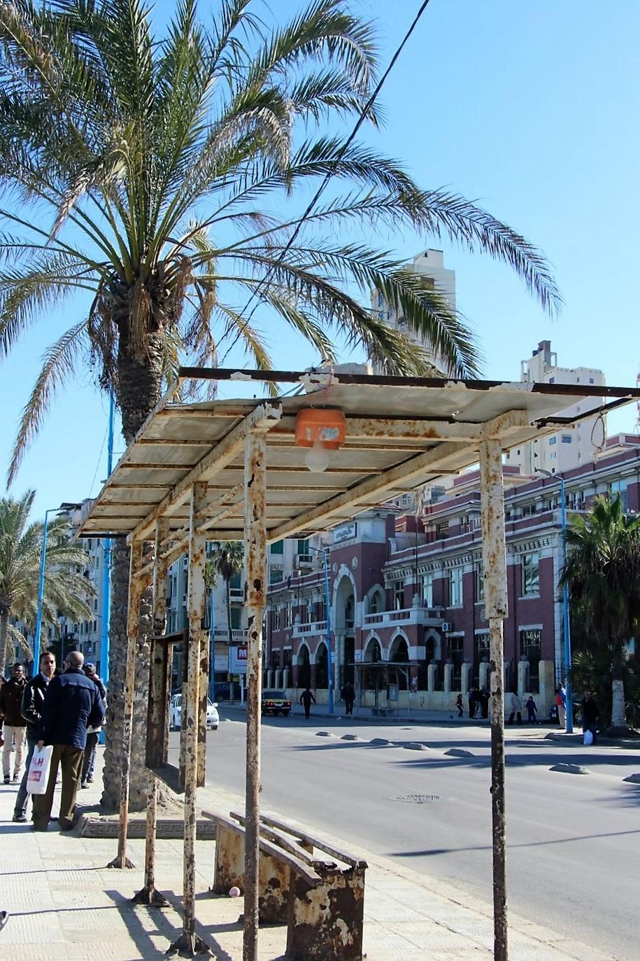 alexandria corniche egypt bus stop