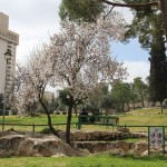 Spending Sabbath in Jerusalem – a day like no other