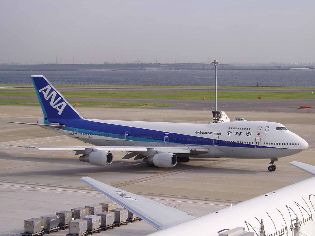 All Nippon Airways Plane