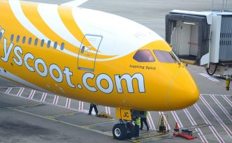 flyscoot airplane livery