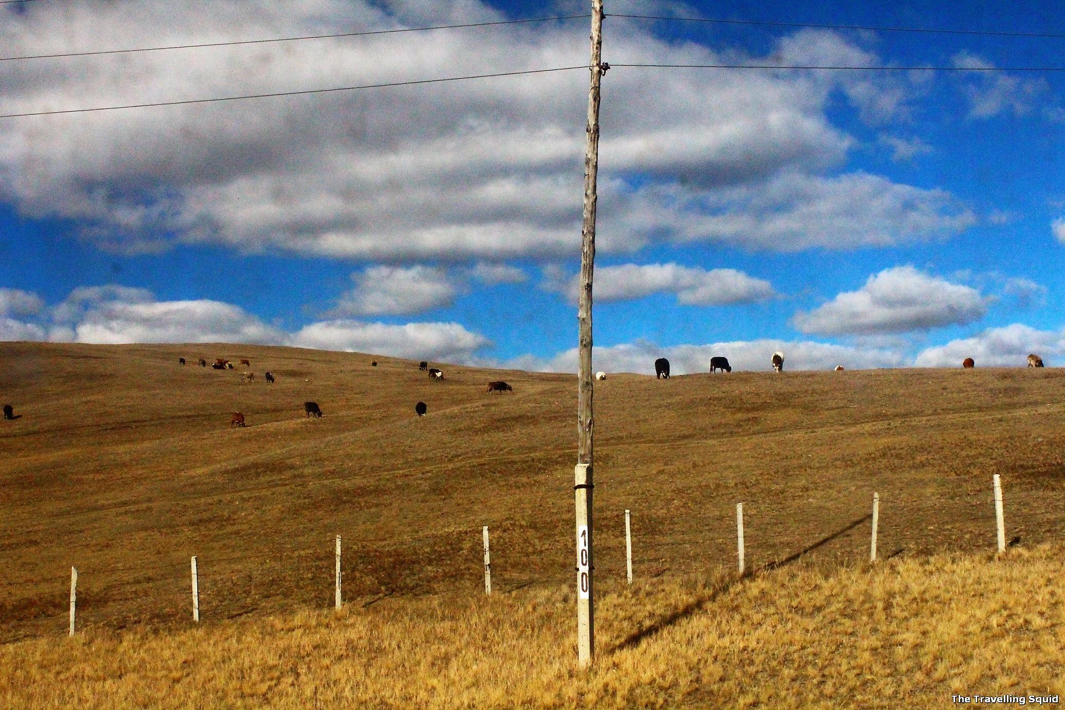 Trans siberian mongolian plains scenery