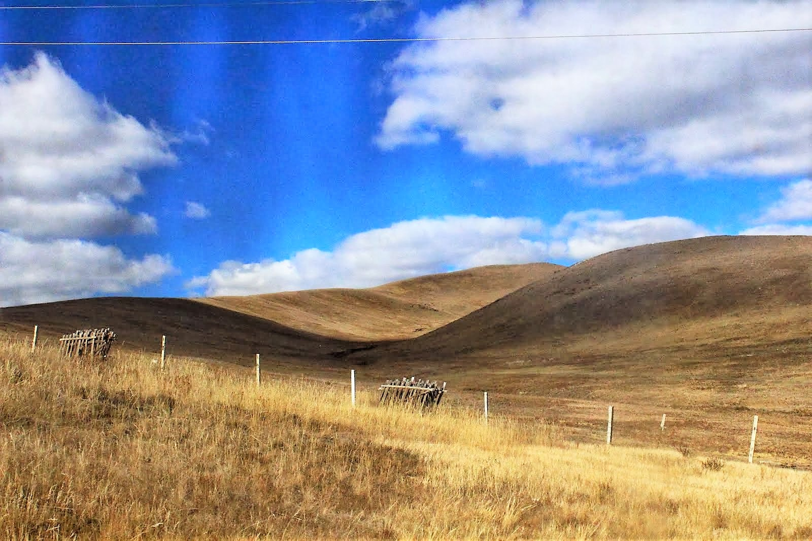 Mongolia - Nothing but pretty