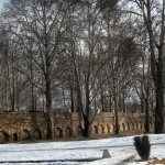 A Kashmiri Photo Story (1): Nishat Bagh in winter