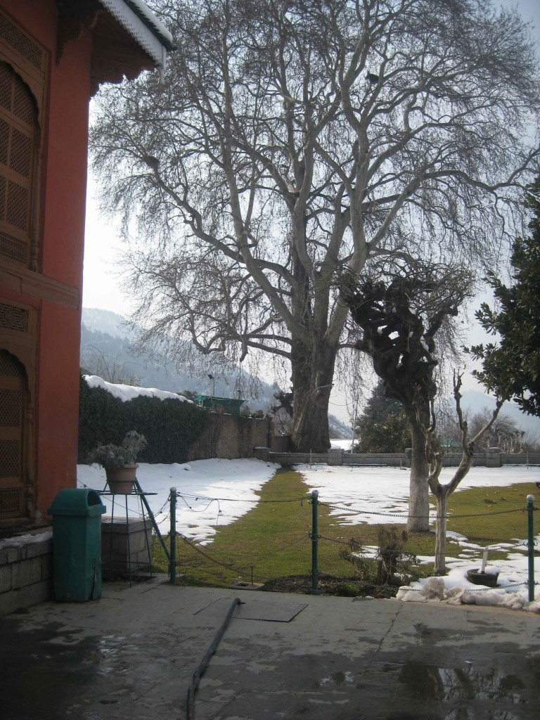 Chashma Shahi Srinagar kashmir