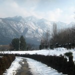 A Kashmiri Photo Story (3): Botanical Gardens Srinagar