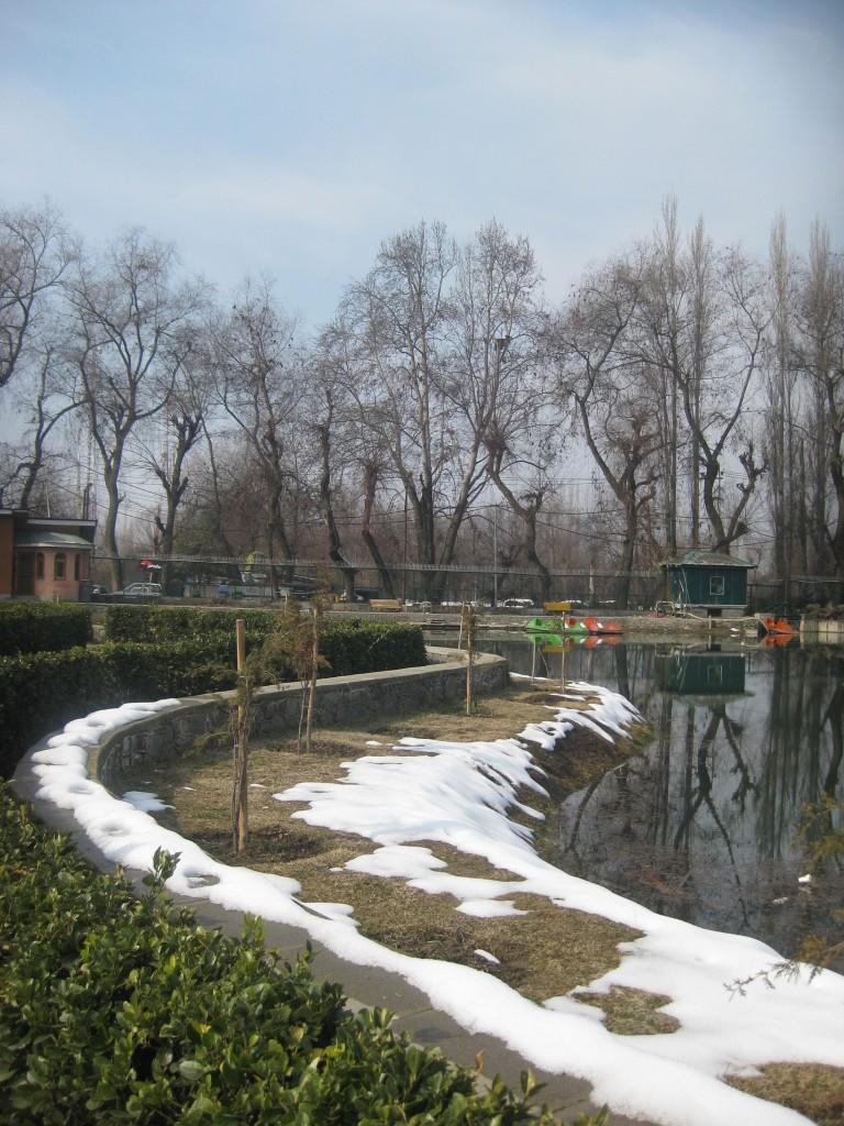 srinagar botanical gardens lake kashmir