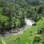 Photo story – Trekking in Ubud Bali at Penestanan and Sayan (Part 1)