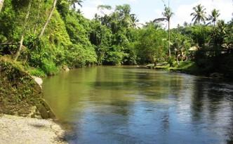 sungai ayung ubud bali