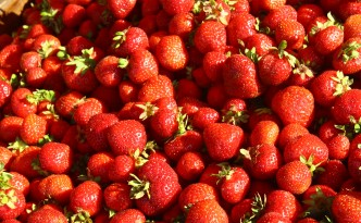 strawberries kauppatori market helsinki