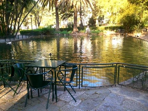 Estrela park lisboa
