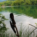 A duck's life at the Plitvice Lakes