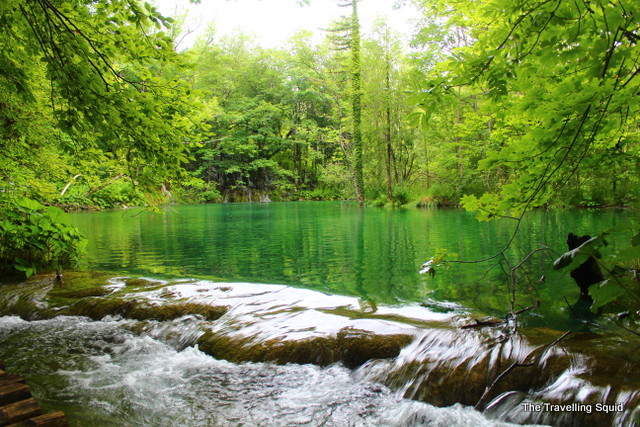 plitvice lakes summertime green water