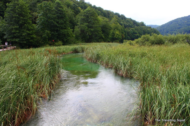 plitvice lakes marshes