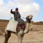 Beware of camel scams at the Pyramids of Giza! (Part 1)