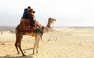 abused camel ride egypt pyramids giza