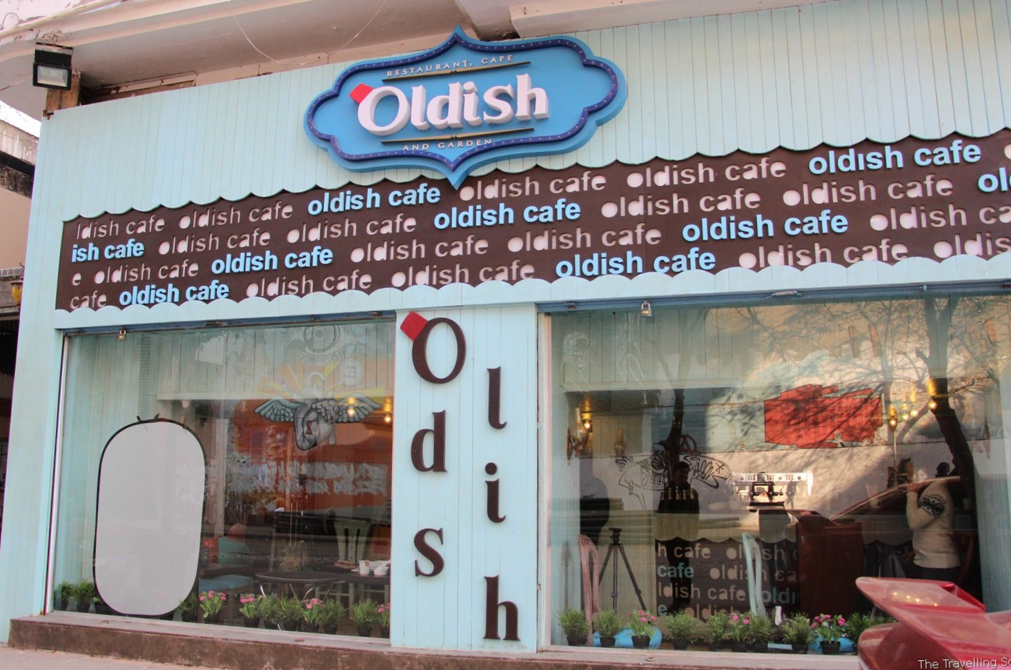 Draping Plants Review Oldish Cafe In Cairo The Travelling Squid