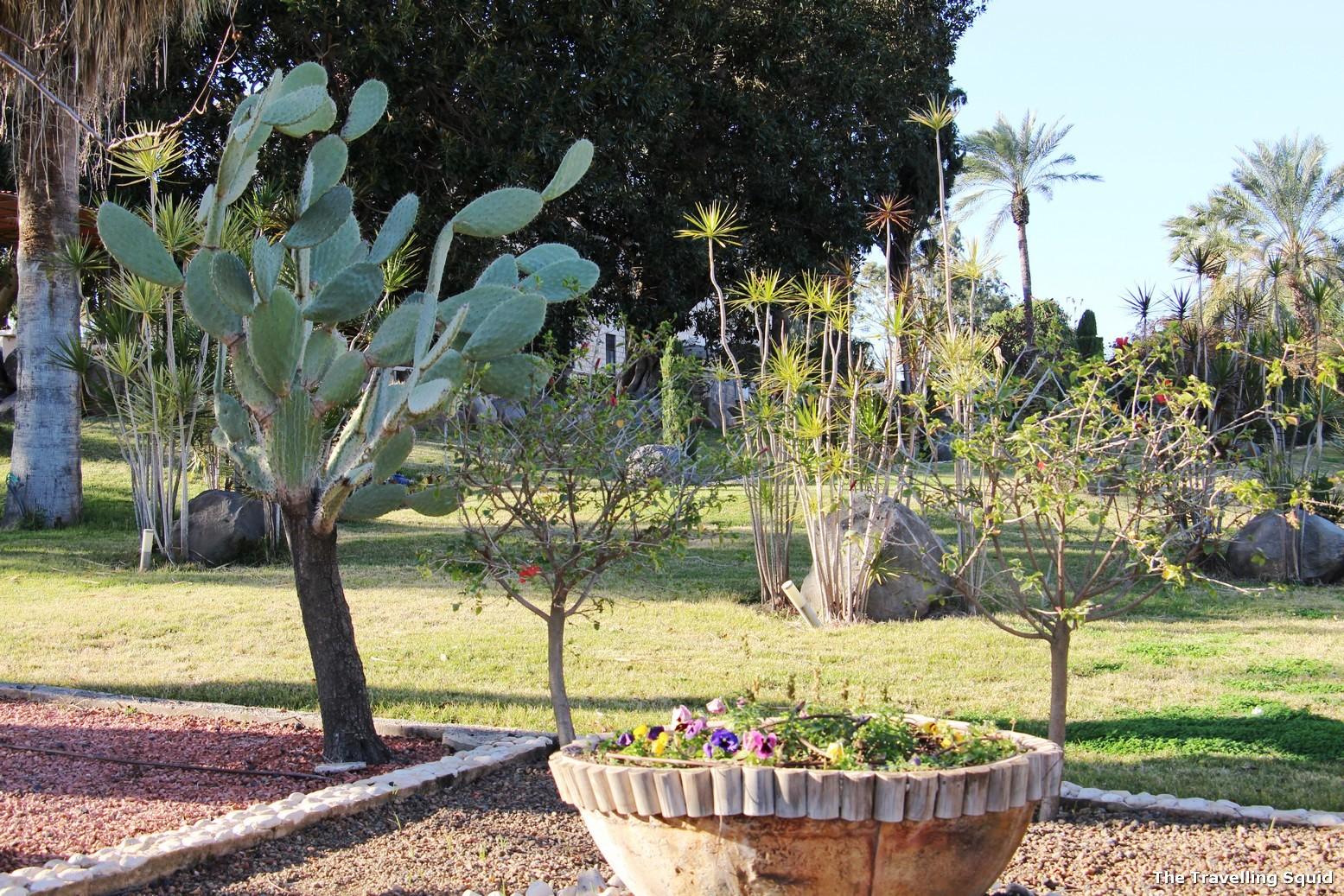 Mount of Beatitudes gardens israel