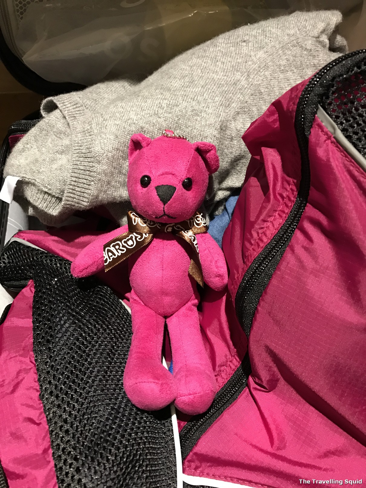 teddy bear jeju tour guide ko bang yong