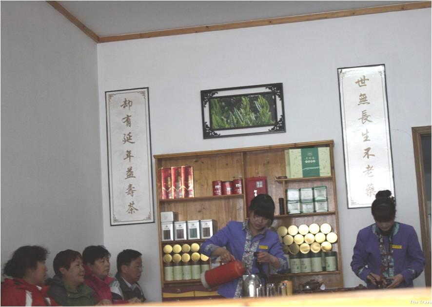 Huangshan tea demo