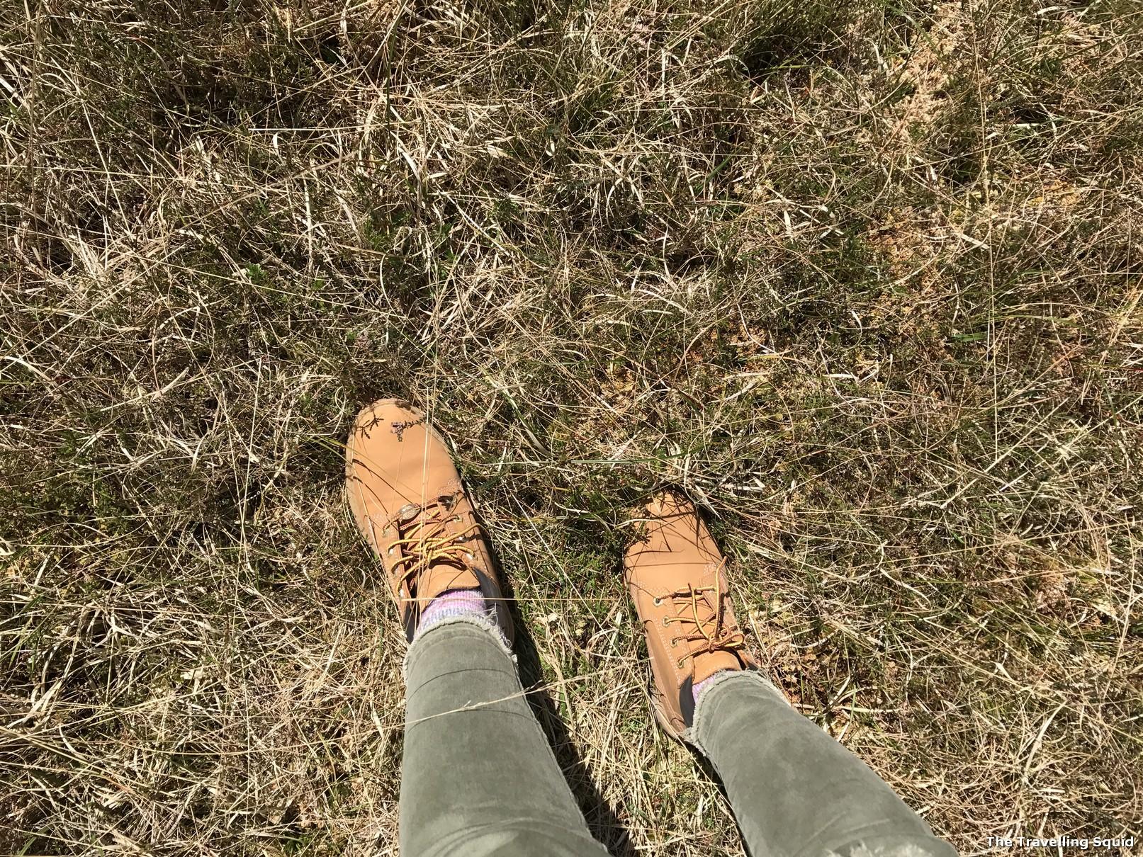 glencoe trek timberland boots