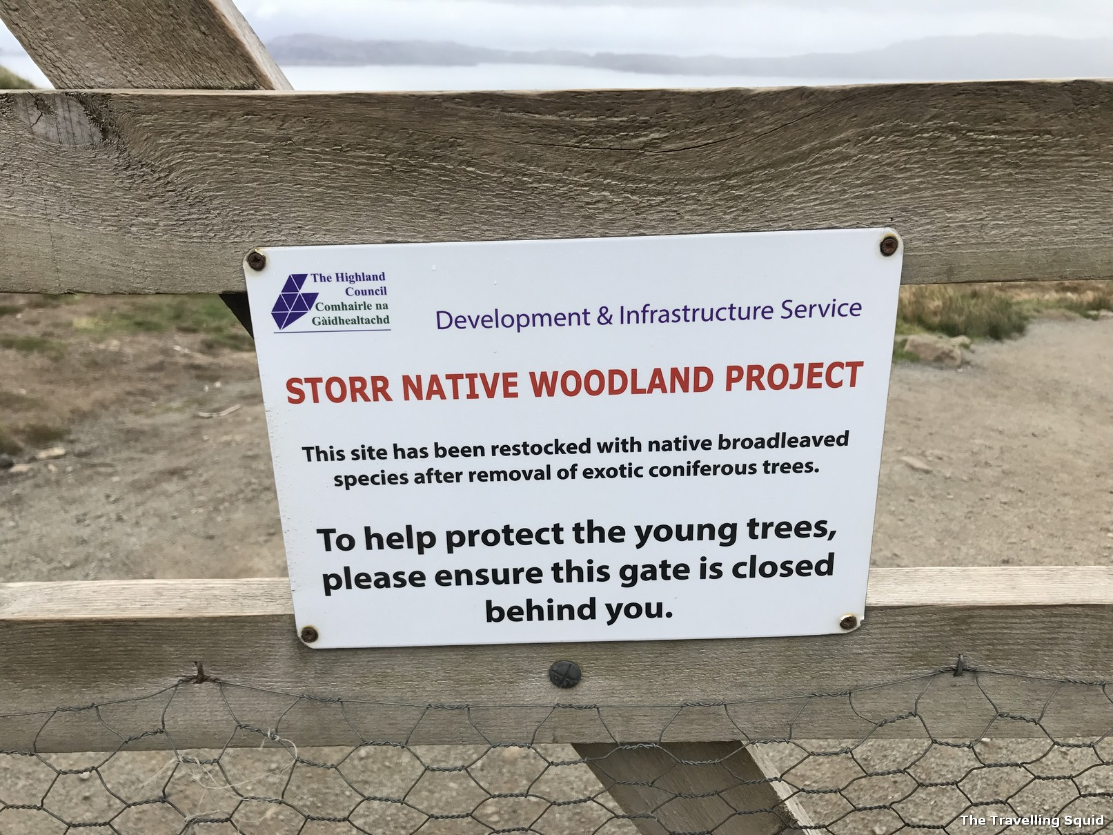 storr native woodland project