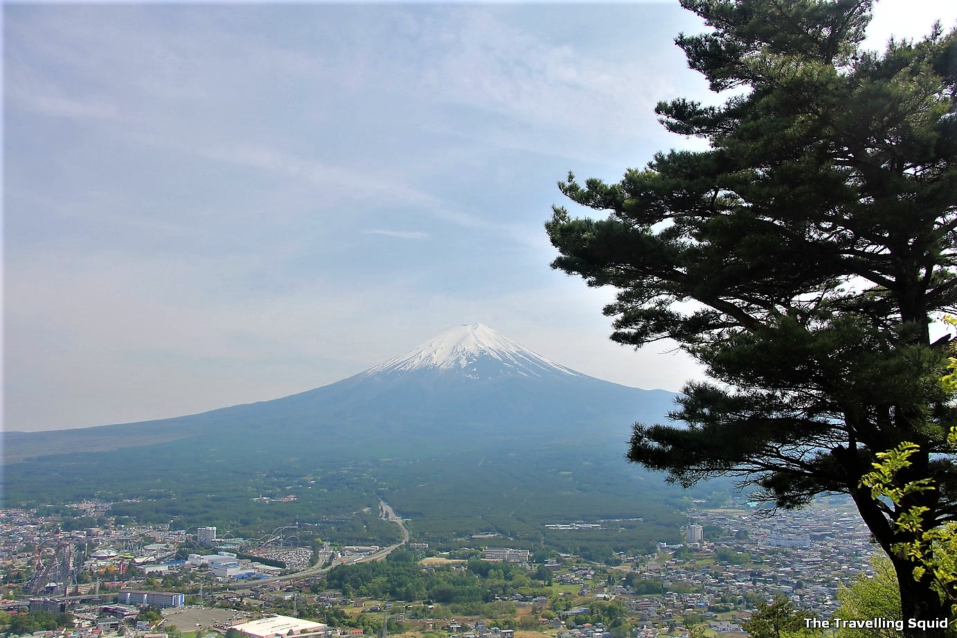 view of mount fuji from mt tenjo