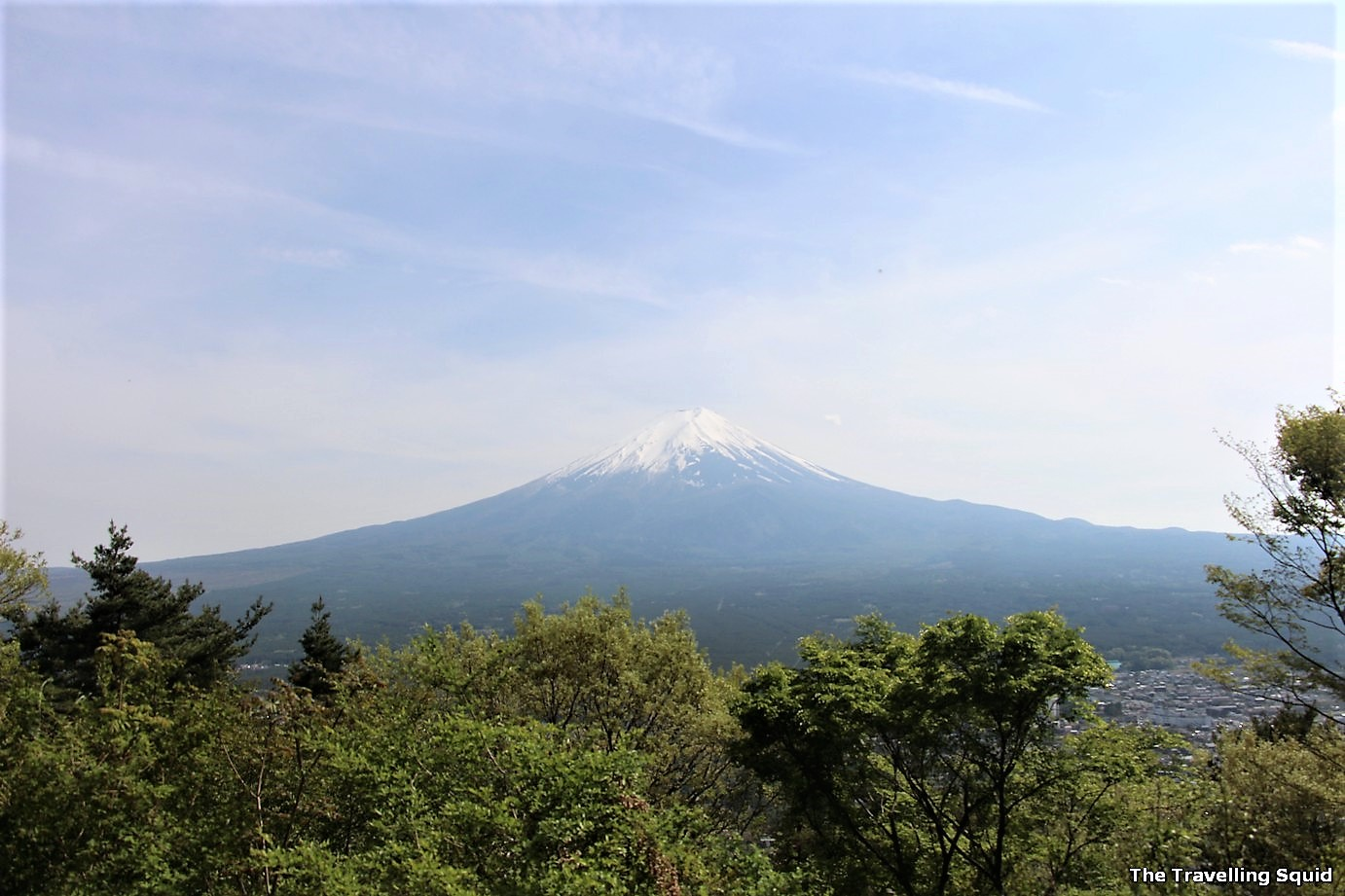 view of mount fuji from mount tenjo