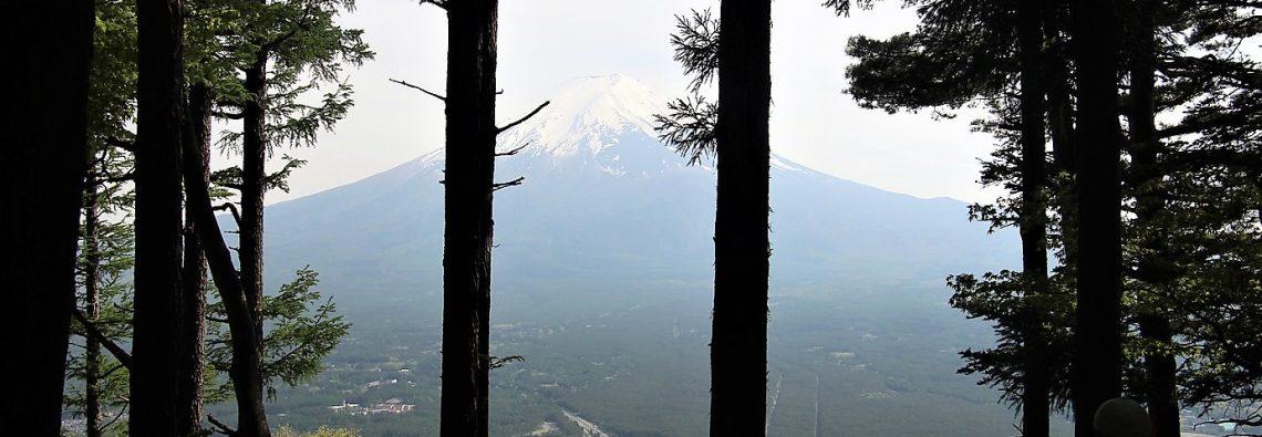 hike to the summit of Mount Tenjo to view Mount Fuji