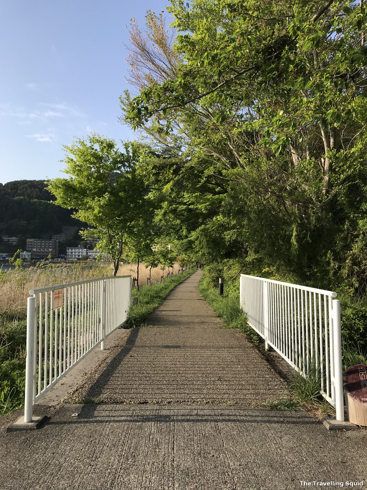 Lake Kawaguchiko Walking Trail