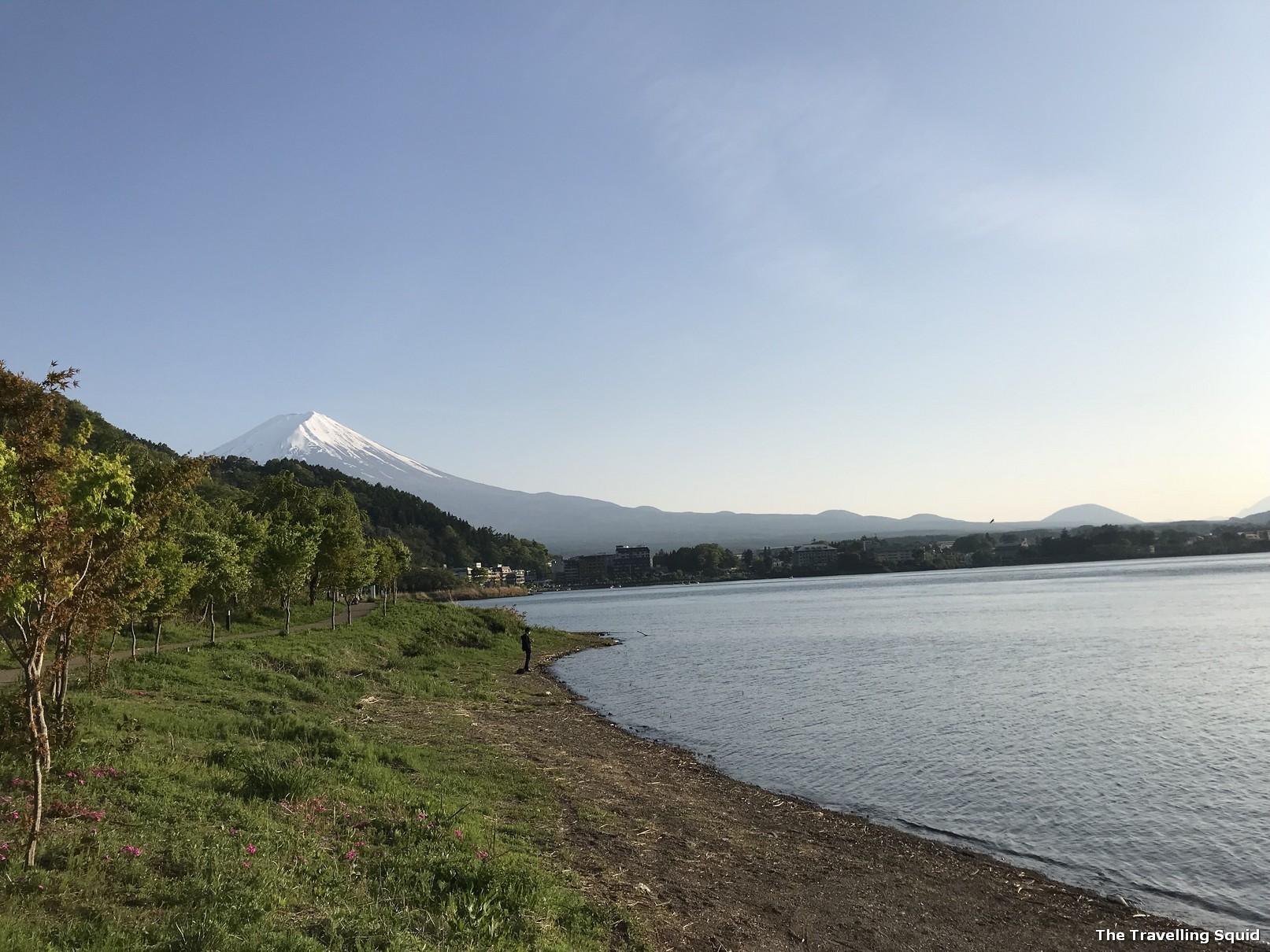mount fuji lake kawaguchiko