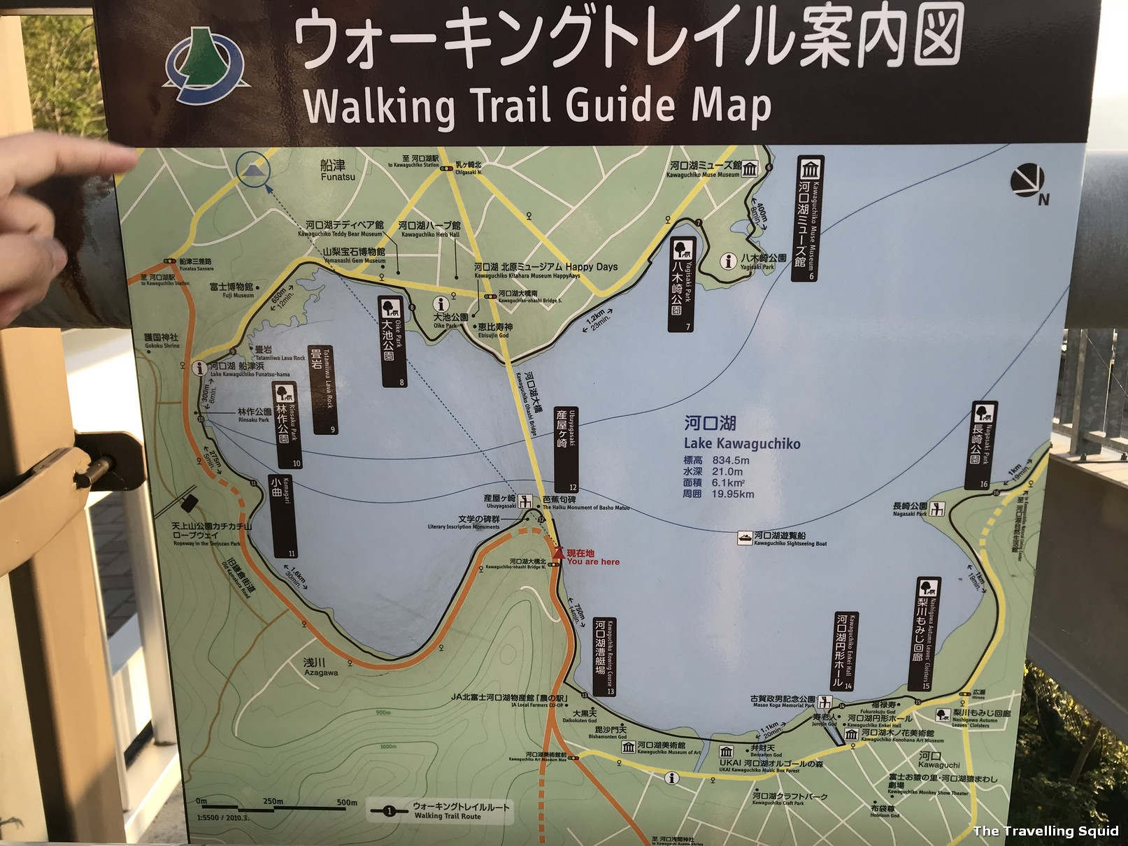 lake kawaguchiko walking trail map