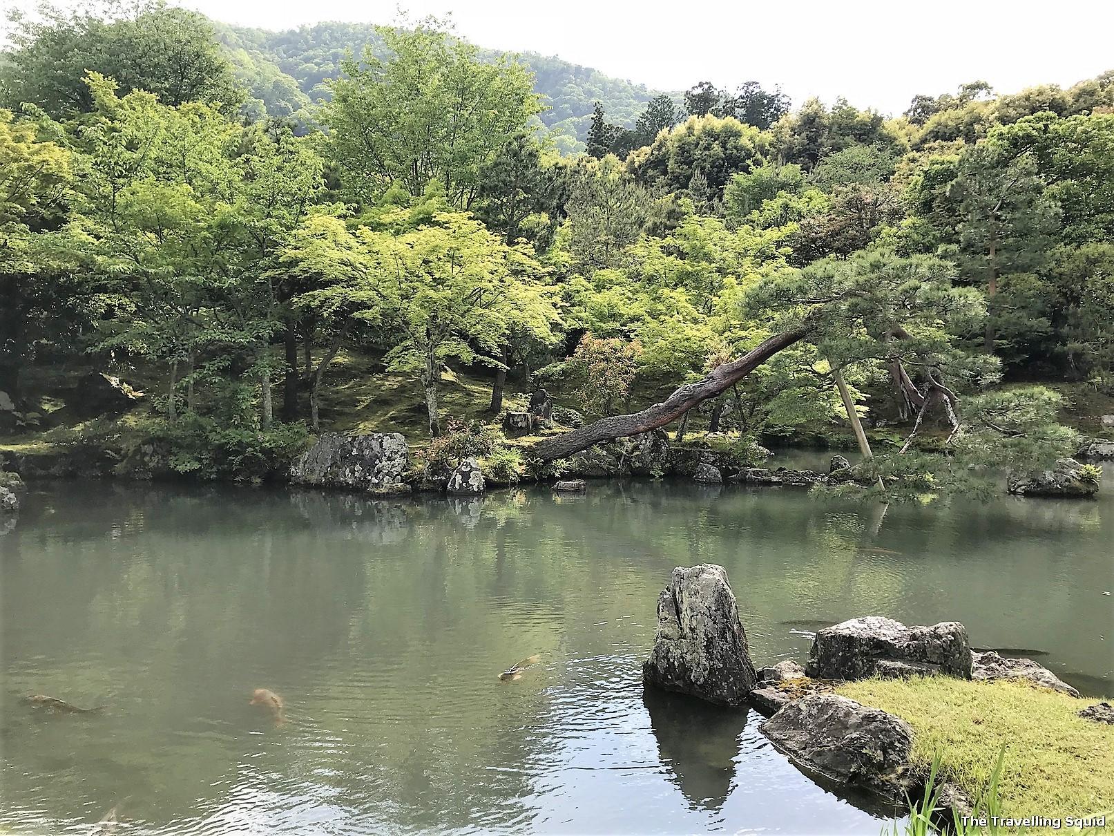 garden Arashiyama Bamboo Forest in Kyoto