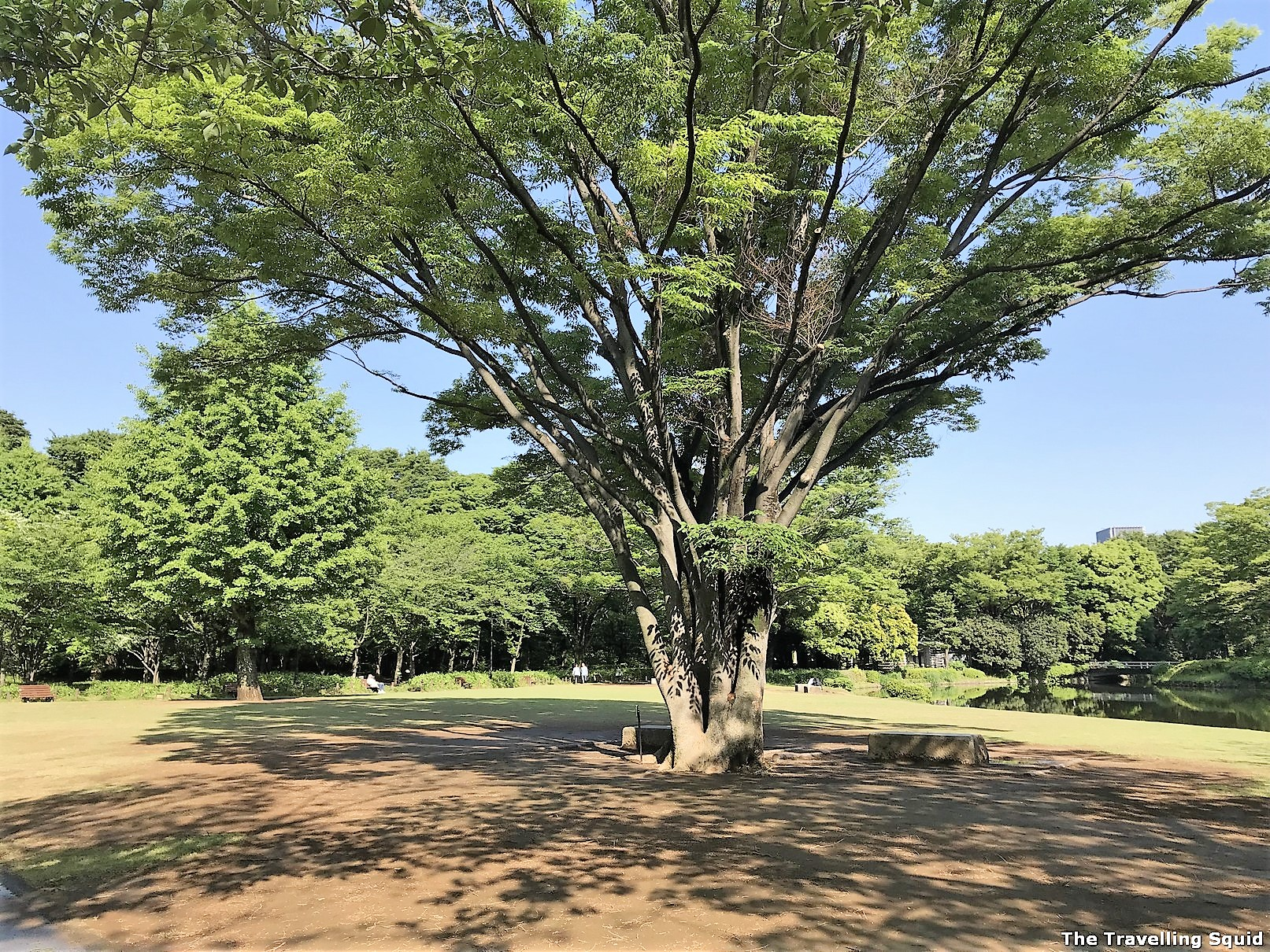 Is the Tokyo Imperial East Gardens worth visiting?