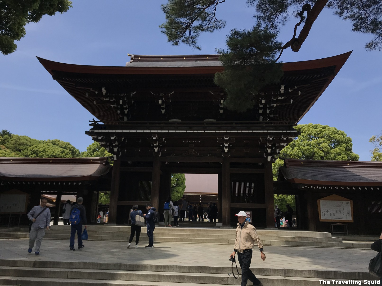 reasons to visit Meiji Jingu in Tokyo