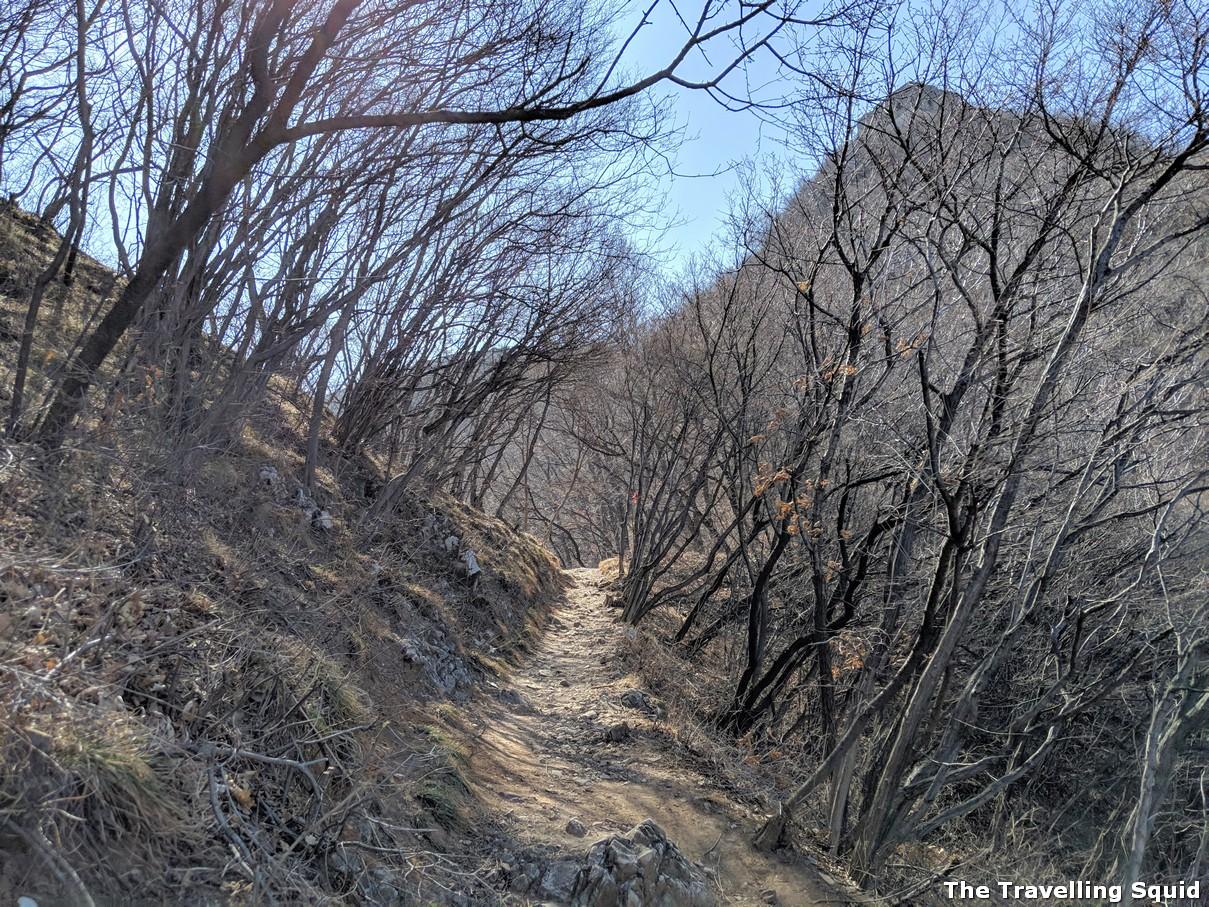 xizhazi Hiking along The Great Wall from Jiankou to Mutianyu