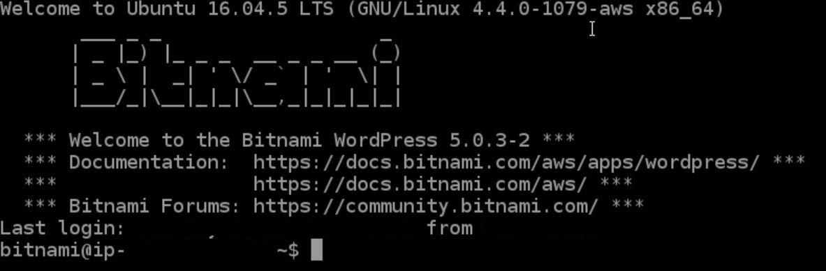 Bitnami linux