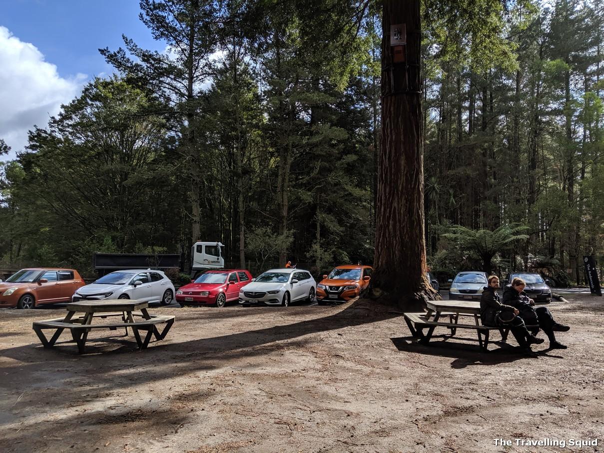 carpark Redwoods and Whakarewarewa Forest in Rotorua
