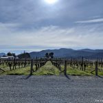 3 reasons to visit the Wairau River Wines Cellar Door & Restaurant in Marlborough