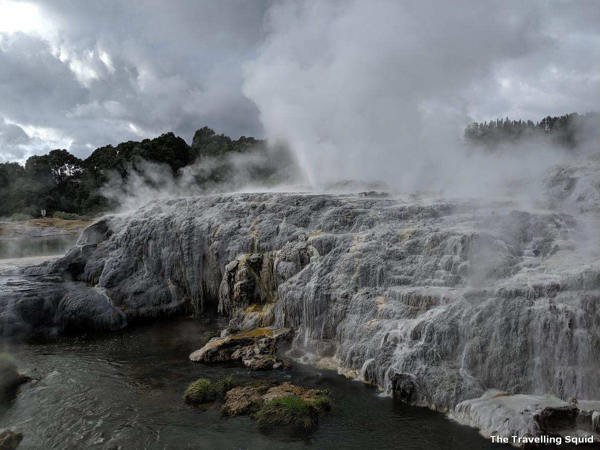 geysers geothermal tei puia