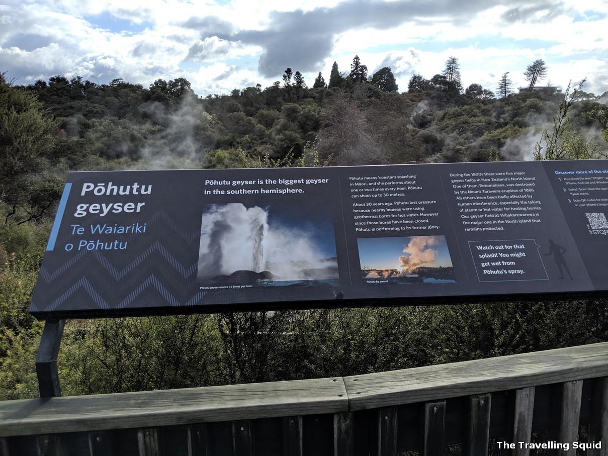 geysers geothermal te puia