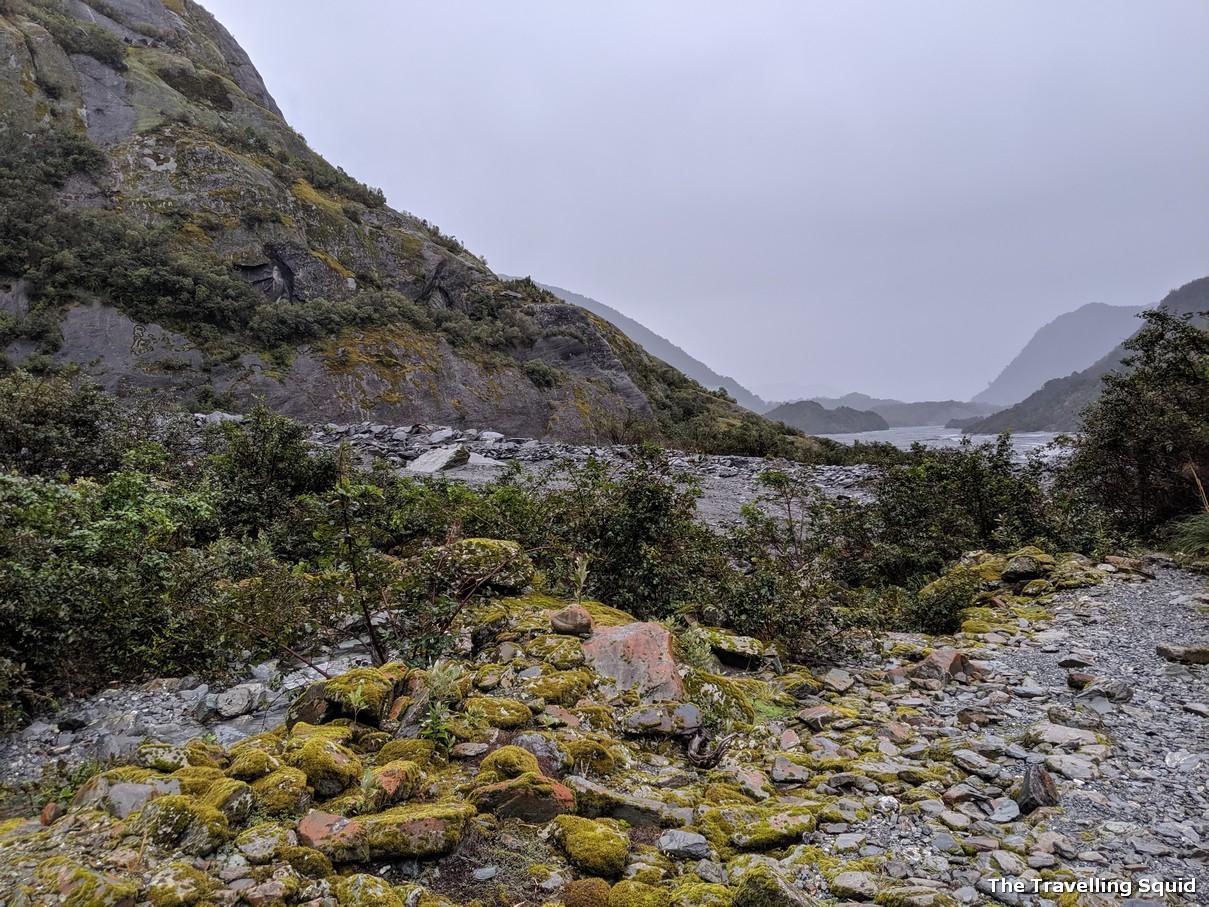 franz josef glacier hike moss